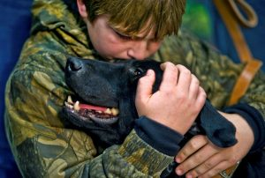 Black Labs equal love